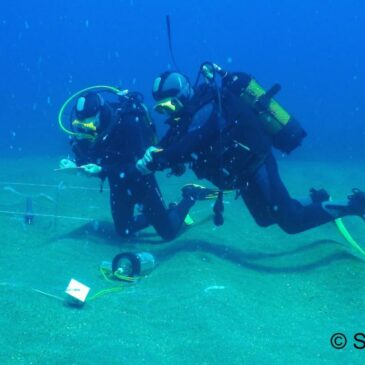 Release of the volume of proceedings of the 6th European Conference on Scientific Diving 2021